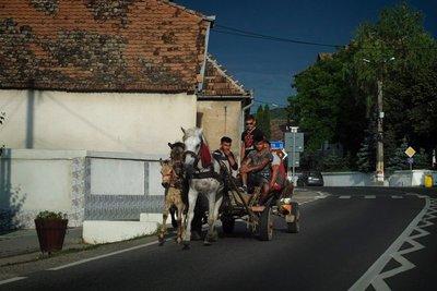 Horse-drawn cart, Romania