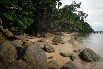 Coastline near Kali Lemon Dive Resort, Nabire, Papua