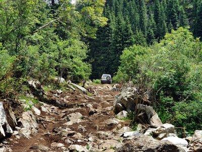 The road to Altyn-Arashan