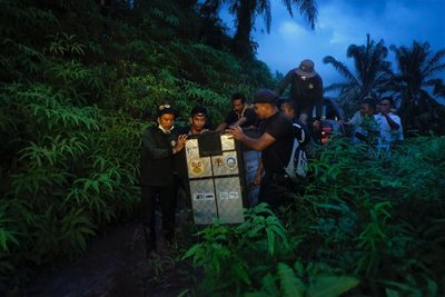 Unloading the cage in the Tenggulun protected forest