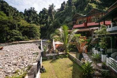 Jungle Inn, Bukit Lawang