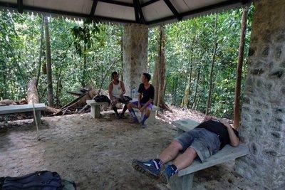 Rest stop, orangutan trek, Bukit Lawang