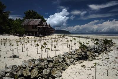 Arborek island, Raja Ampat