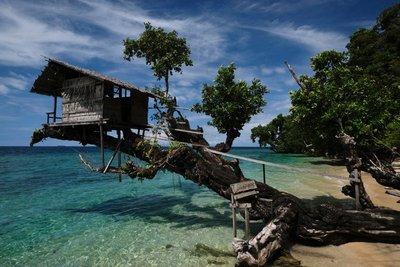 Tree house, Kali Lemon Dive Resort, Nabire