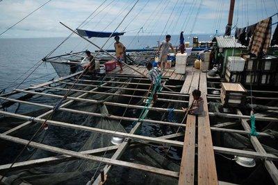 Bagan, fishing platform