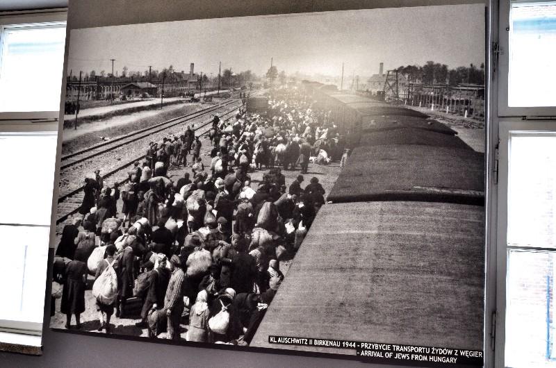 Train arrives at auschwitz.