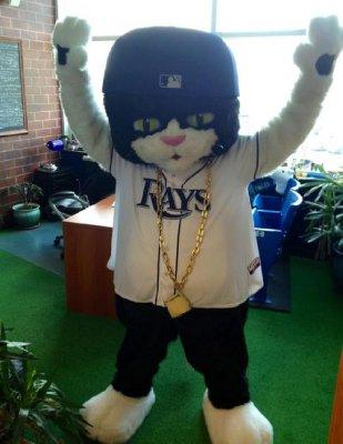 Rays rapping mascot, Tampa, Florida