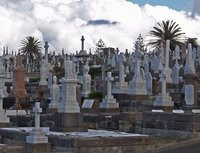 Waverley Cemetary (between Bondi and Coogee)