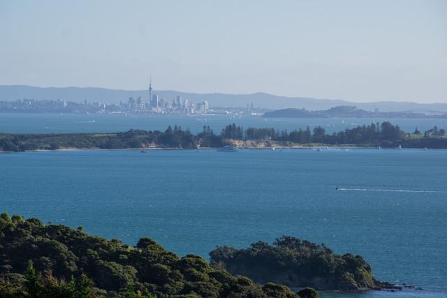 large_Auckland-8019.jpeg