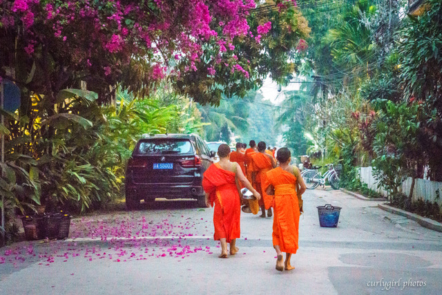 large_Laos-0378.jpeg