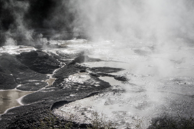 large_Rotorua-8206.jpeg