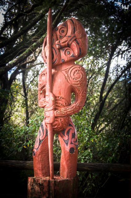 large_Rotorua-8222.jpeg