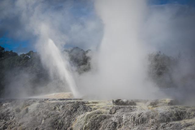 large_Rotorua-8251.jpeg
