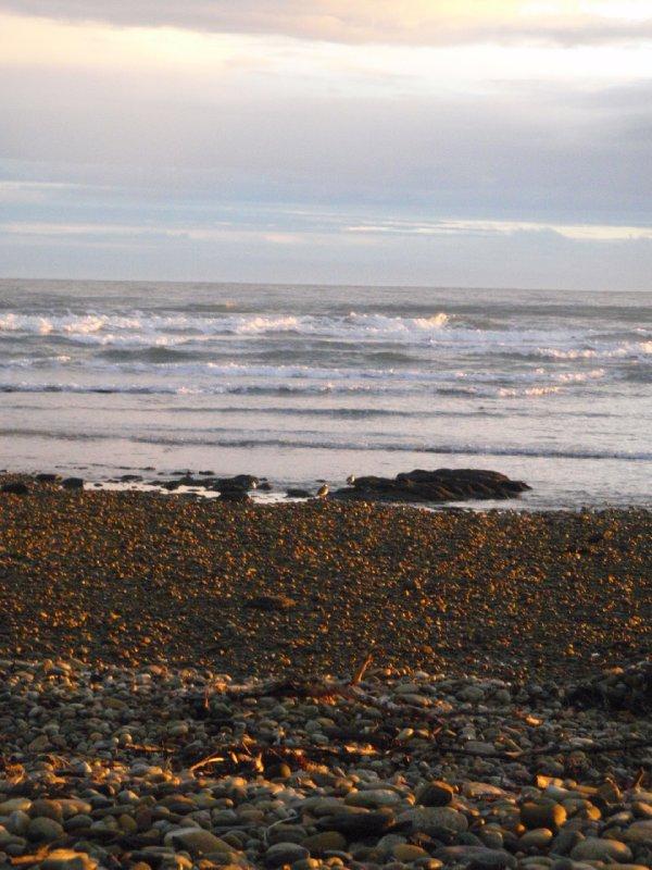 Devonport beach at sunrise