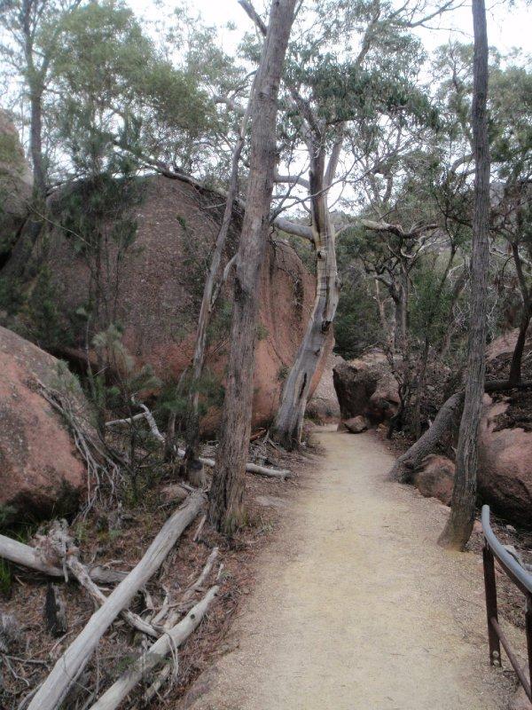Walk to Wineglass Bay Lookout