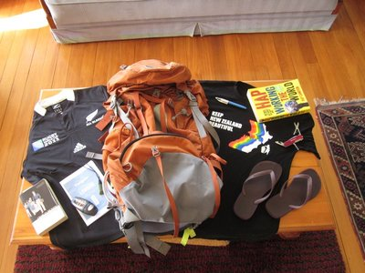 Essential Kiwi Travel Items for going to the UK