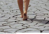 womans_feet_walking_over_cracked_earth_mon005077