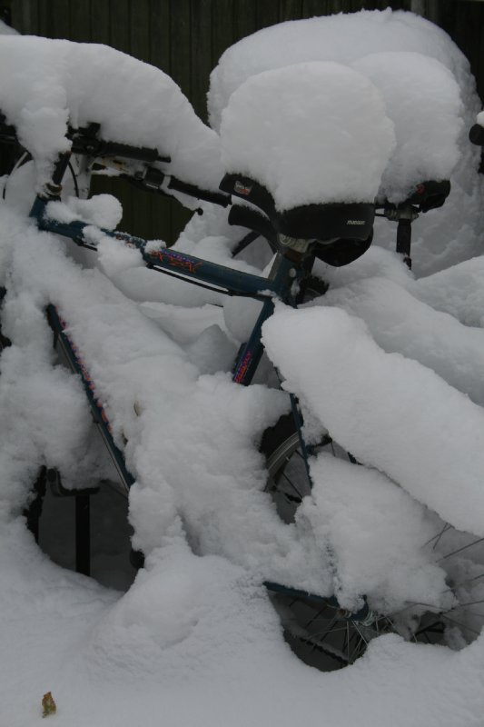 Not a good cycling day!