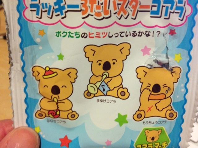 Three lucky Koala cookies