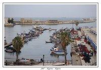 Algiers's Harbour