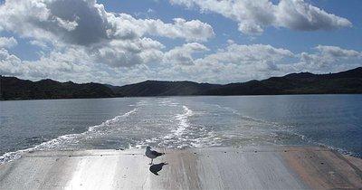 Ferry_3a.jpg