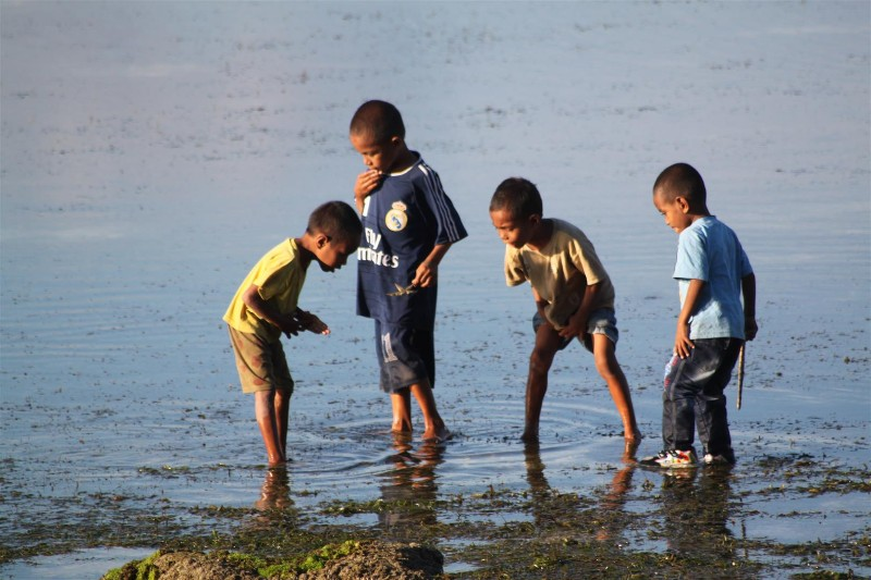 All kids love to explore rock-pools at low tide