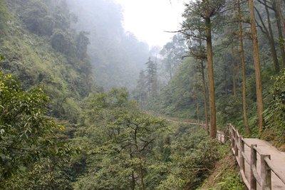 Mount Emei 10