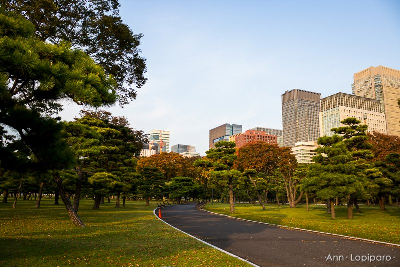 On the way to the Imperial Palace.