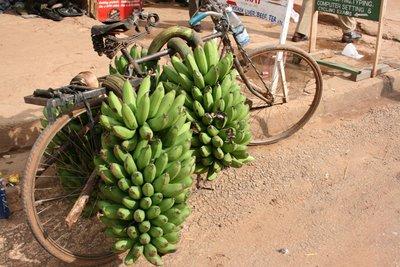Picture_60..ke_bike.jpg