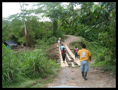 jungle_bridge.jpg