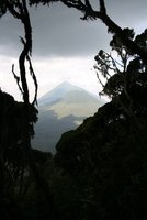 Virunga volcanos - view from the Sabinyo hike