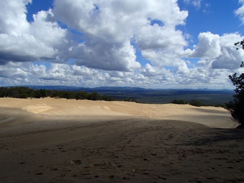 Cooloola Sandpatch