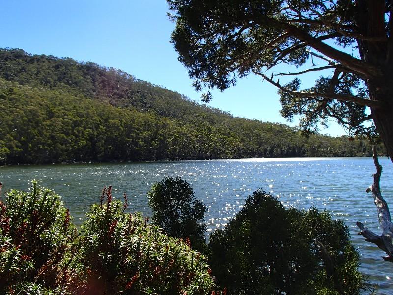 Mount Fields National Park