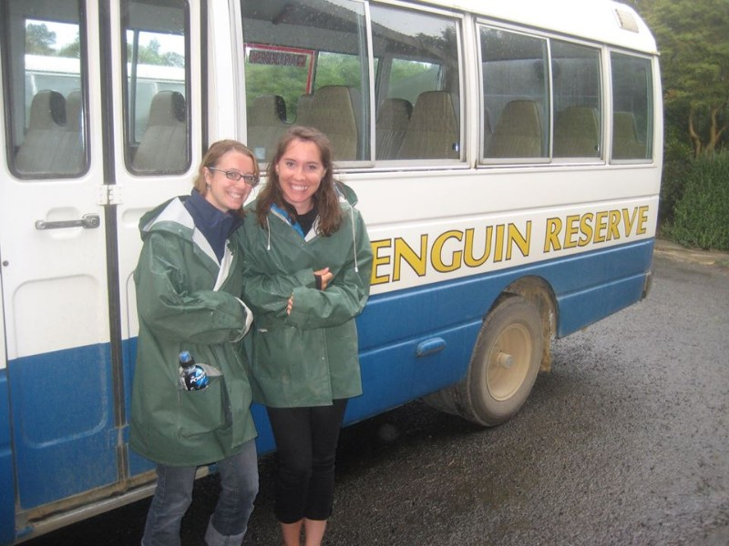 penguin reserve