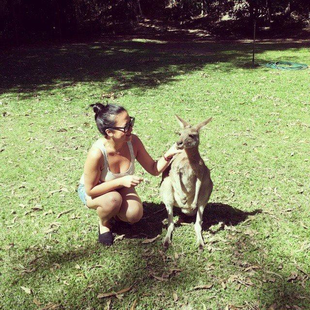large_Kangaroo_p.._Adventures.jpg