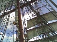 Sails_3.jpg