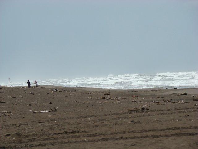 The beach in Tortuguero