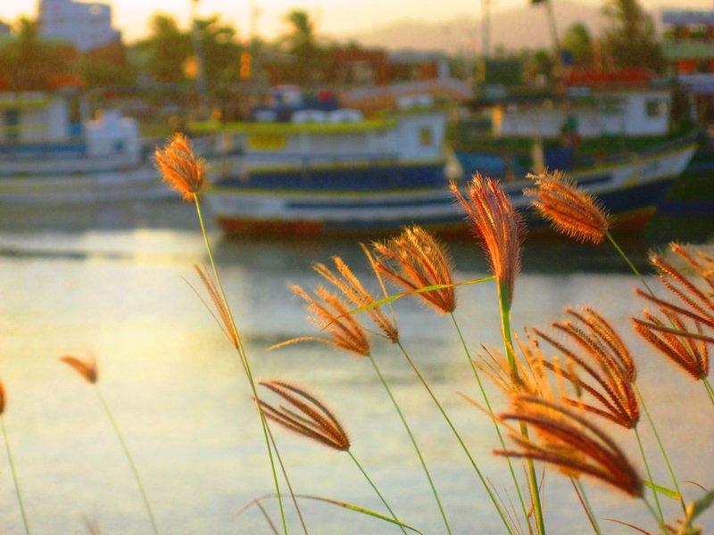 Sunset at Itaipava