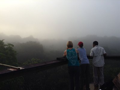 At the top of the observation tower as the sun rose and the fog lifted
