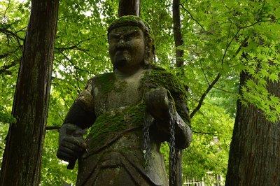 Die Tempel sind alle in dichtem Wald gelegen