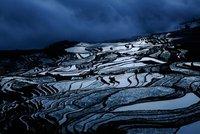 Rice Terrace Yunnan