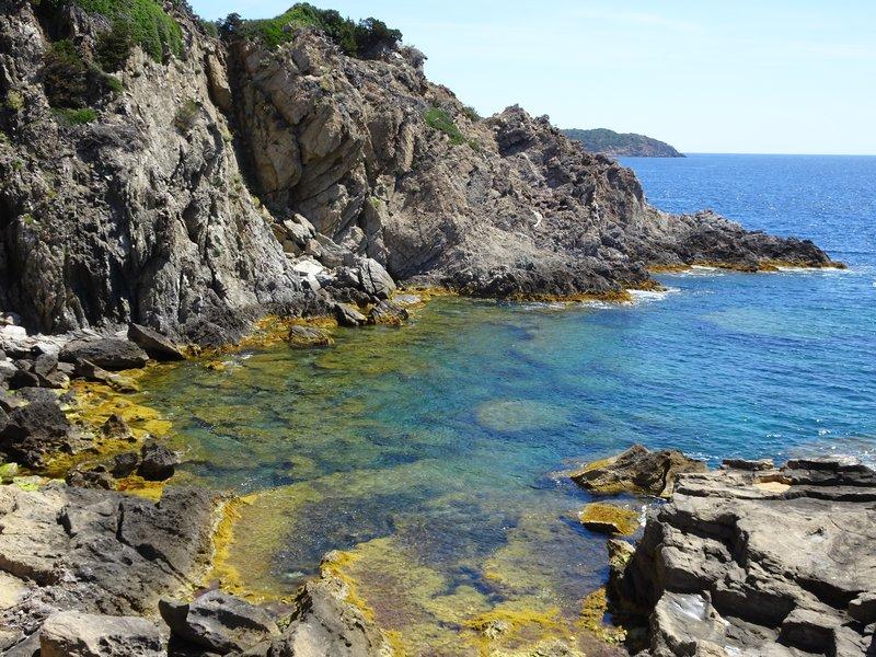 Sur l'île de Port-Cros