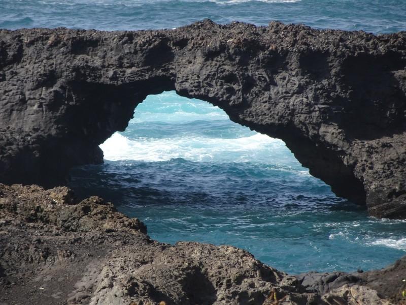 Arche de Salina