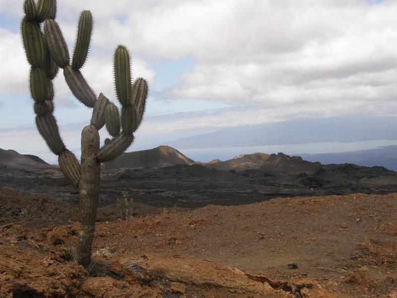 Randonnée vers le volcan