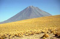 A la frontière Chili Bolivie