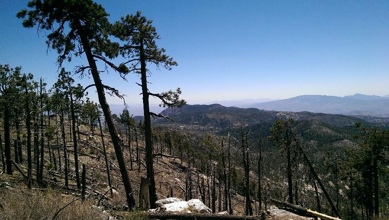 2003 Mt Lemmon Fire