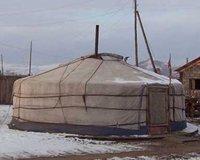 ger, Anak Ranch, Mongolia