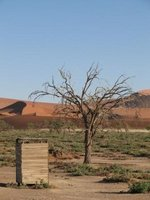 View in the Sossusvlei