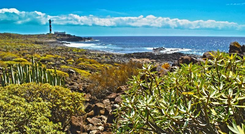 Punta Rasca Natural Reserve - Tenerife