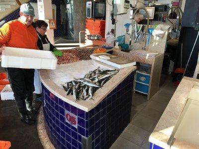 0797_sat_fish_market.jpg